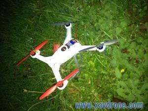 crash blade 350 qx
