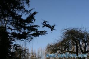 ethos 130qx au dessus des arbres
