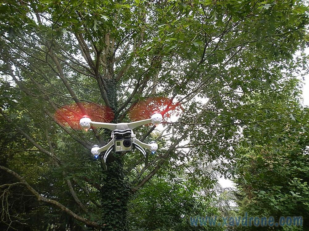 arbres et drones les arbres sont ils dangereux pour les drones. Black Bedroom Furniture Sets. Home Design Ideas