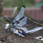 metafly dans le jardin